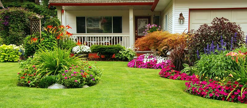 Gain Instant Curb Appeal with Sod and Improve the Value of Your Home